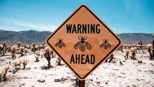 Hvepsestik