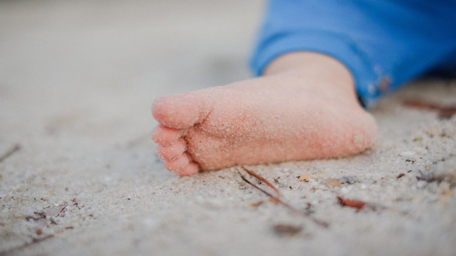 Håndvorter fodvorter